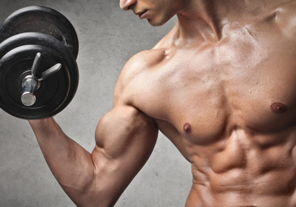 gain-muscle-fast